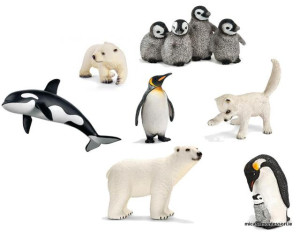 arctic_animals_micasa_montessori-01