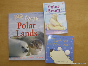 arctic_animals_micasa_montessori-13