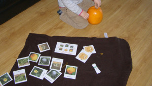 autumn_micasa_montessori22