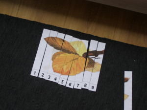 autumn_micasa_montessori36
