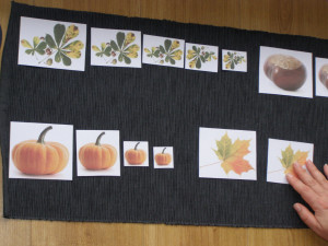 autumn_micasa_montessori38
