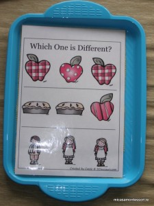 micasa_montessori_apple_theme_P9258554