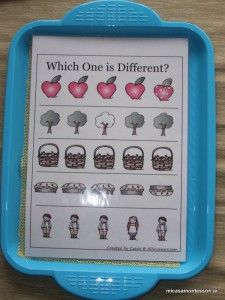 micasa_montessori_apple_theme_P9258555