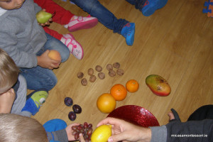 micasa_montessori_fruit&veg_theme24