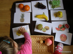 micasa_montessori_fruit&veg_theme29