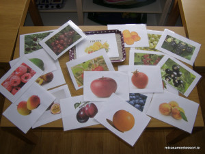 micasa_montessori_fruit&veg_theme57
