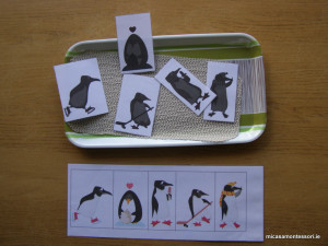 pinguins-theme-micasa-montessori-18