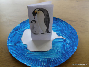 pinguins-theme-micasa-montessori-22