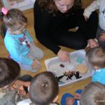 arctic-blog-micasa-montessori-11