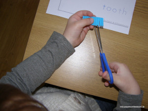 teeth-act-micasa-montessori-preschool3