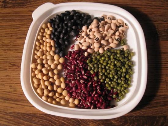 bean-micasa-montessori-8