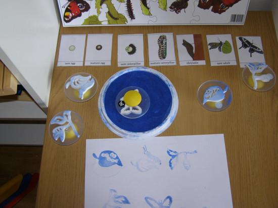 butterfly-micasa-montessori-28