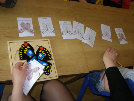 butterfly-micasa-montessori-29