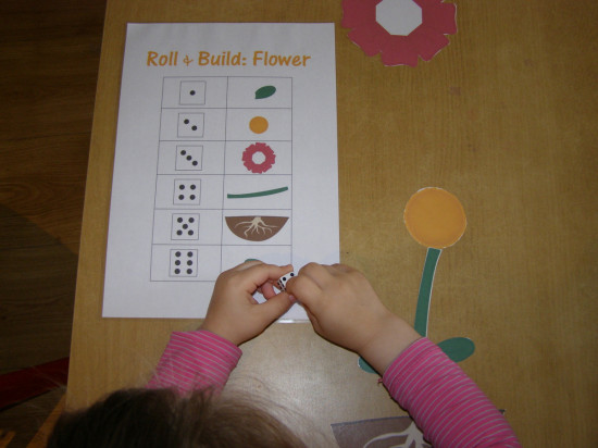 flowers-insects-mi-casa-montessori-preschool
