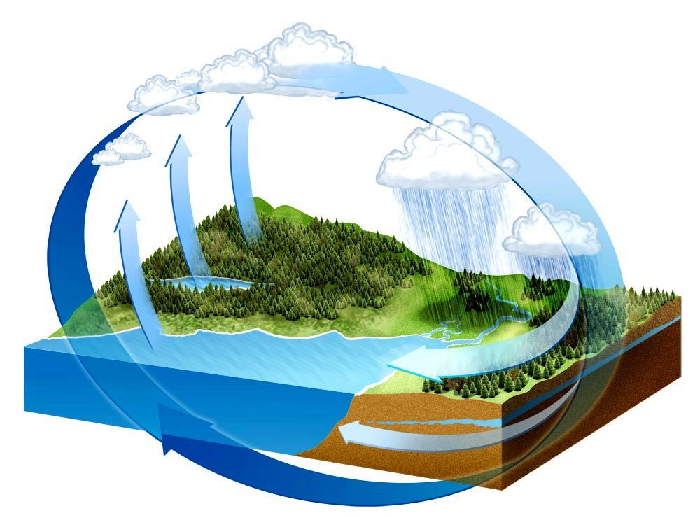 Images of Water Cycle 2014 06 The Water Cycle